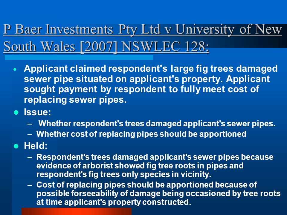 P Baer Investments Pty Ltd v University of New South Wales [2007] NSWLEC 128;